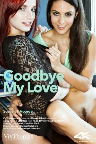 Goodbye My Love Episode 3 - Accede