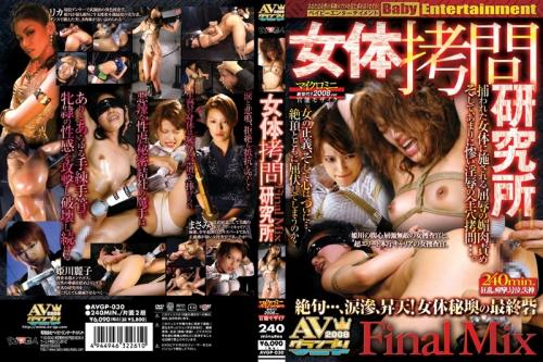 [AVGP-030] 女体拷問研究所 FINAL MIX Other Humiliation Rape Squirting