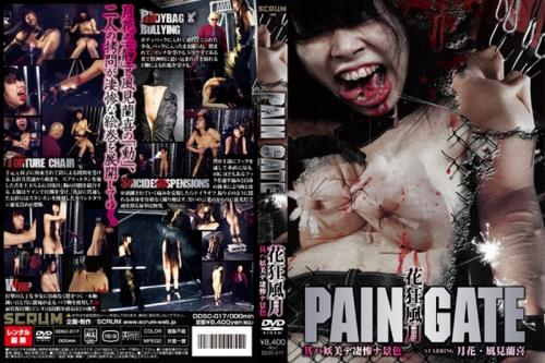 [DDSC-017] PAIN GATE 花狂風月 其ハ妖美デ凄惨ナ景色 拷問・ピアッシング スクラム PAIN GATE Extreme